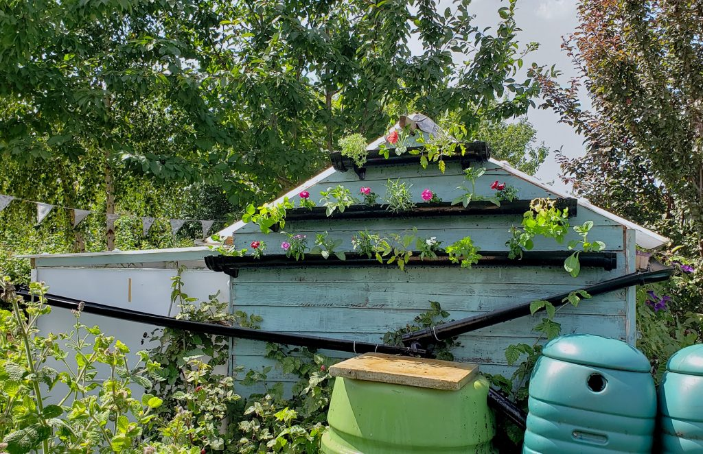 start saving water in a water butt to help you garden organically